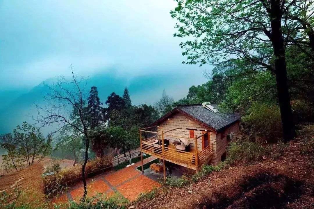 浙江举办文化和旅游项目建设暨乡村旅游发展推进会