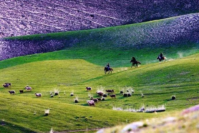 新疆十一旅游升温