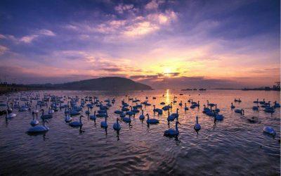 """""""文旅融合发展 乐享好客山东"""" 首届中国国际文化旅游博览会在山东举办"""