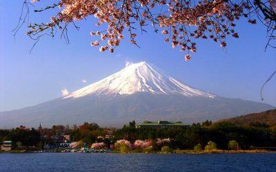 日本将分阶段下调159个国家和地区旅行警告
